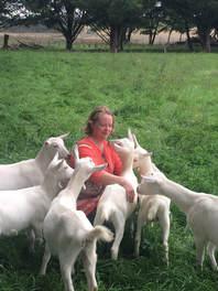 Sunhill Dairy Goats